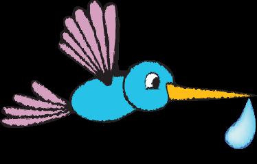 colibri-goccia