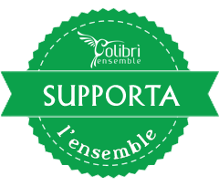 support-ensemble